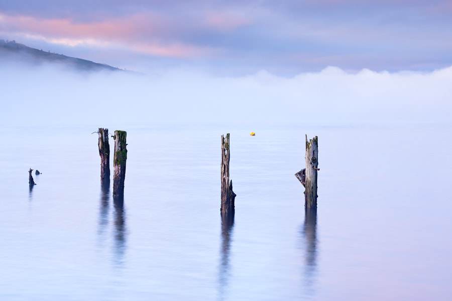 Photograph Mist & Moorings Past by Paul Sutton on 500px