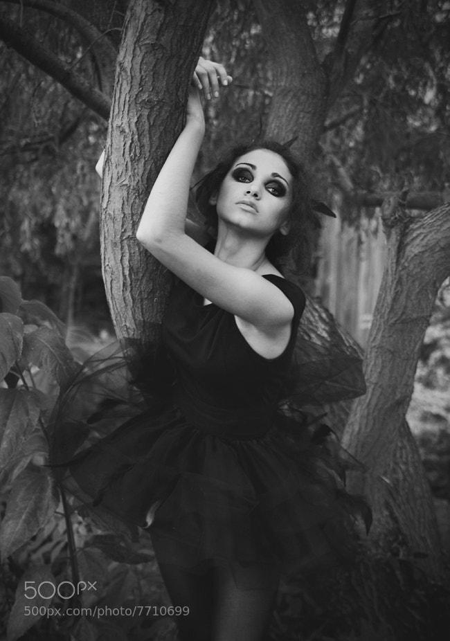 Photograph Untitled by Katarzyna Piela on 500px