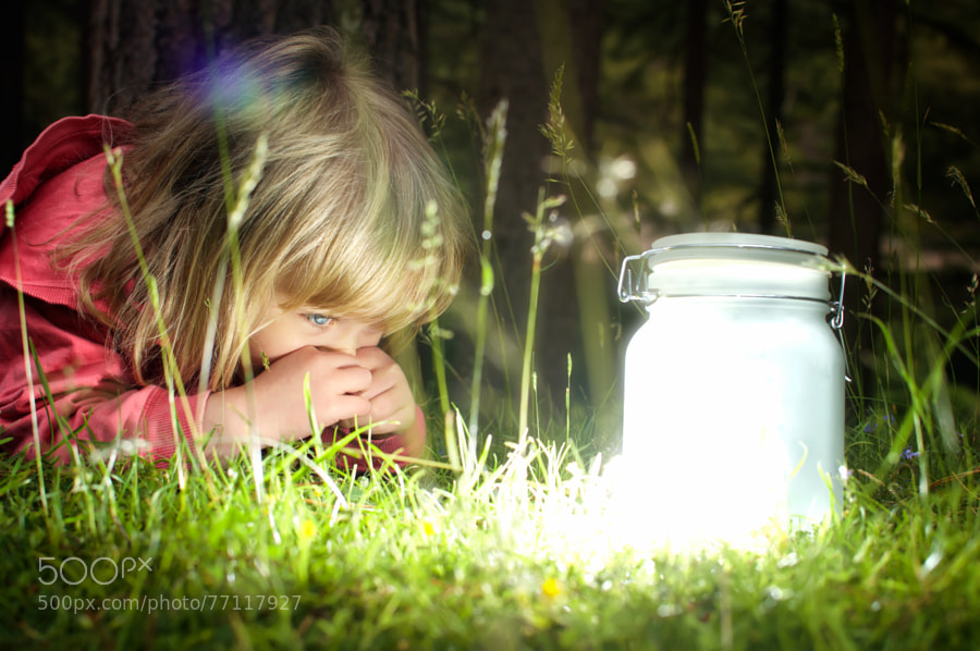 Photograph Fairies in a Jar (2) by Dominic Lemoine Photography on 500px