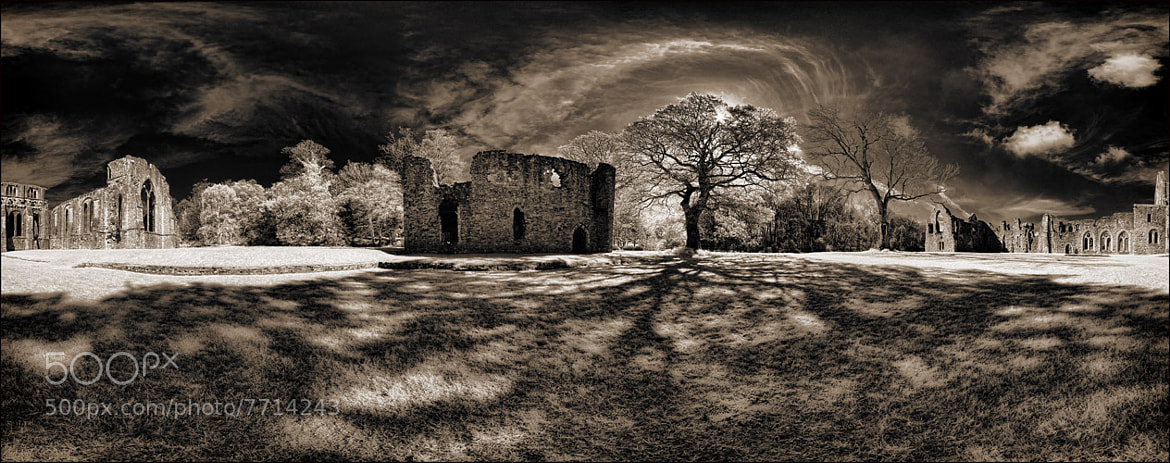 Photograph The Abbot's House at Netley Abbey by Richard Gadd on 500px