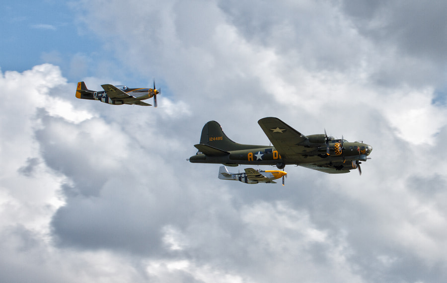 Sally B with Little Friends
