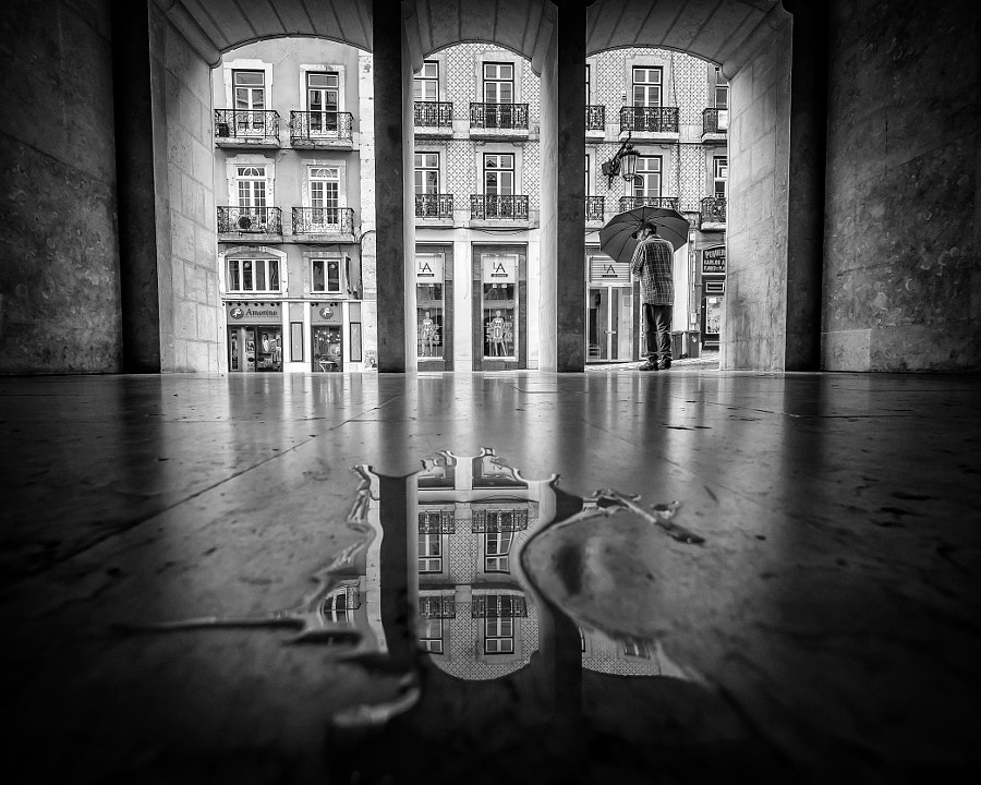 Untitled by Daniel Antunes on 500px.com