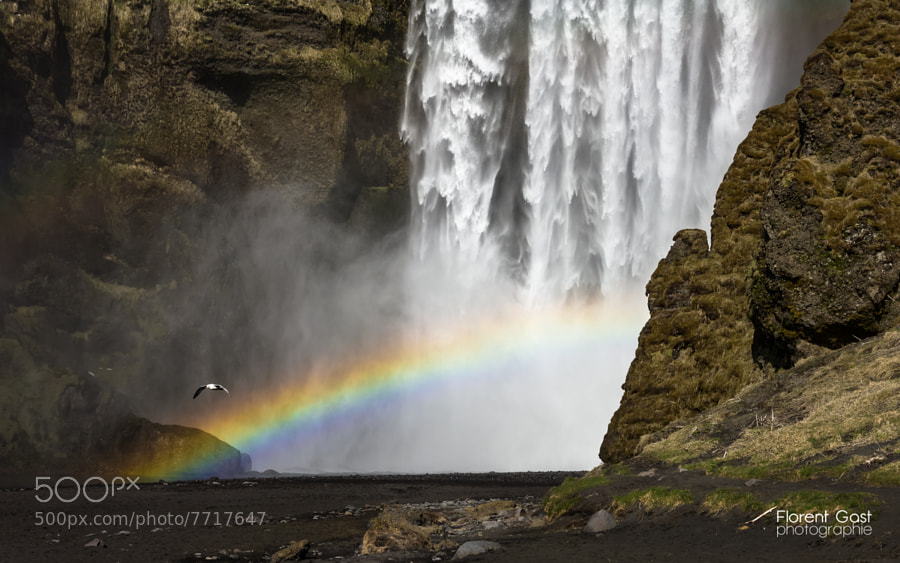 Photograph Skógafoss - Iceland by Florent Gast on 500px