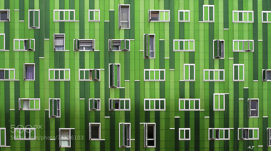 Photograph Windows by Janus-Photos on 500px