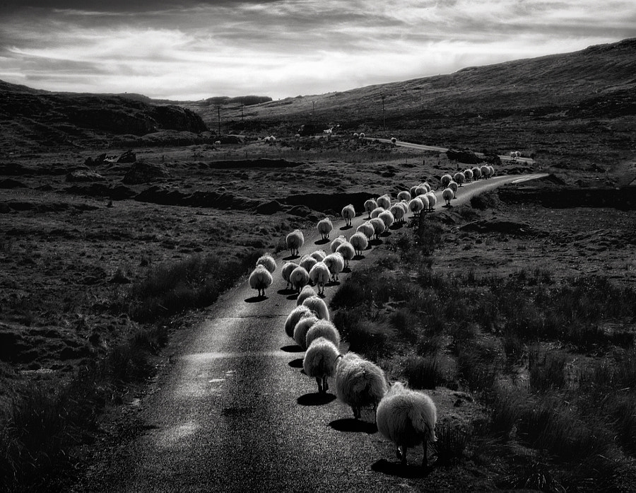 Photograph Evening Rush Hour by Graham Smith on 500px