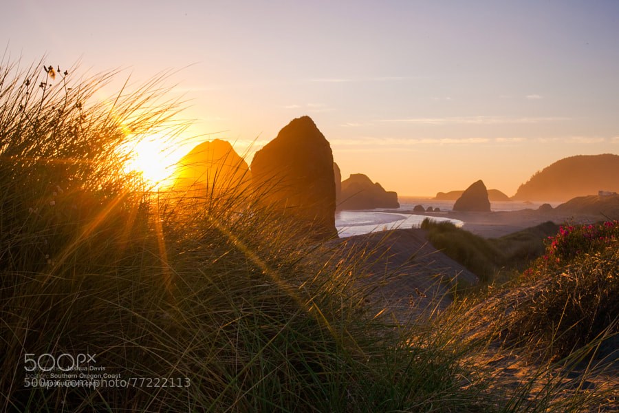 Southern Oregon Coast I by Joshua Davis Photography