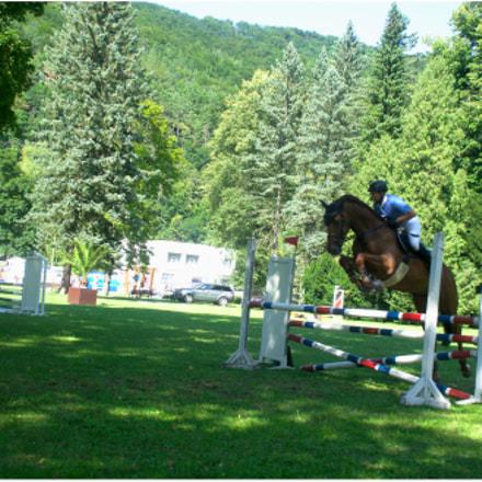 Horse Parkour #5