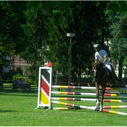 Horse Parkour #7
