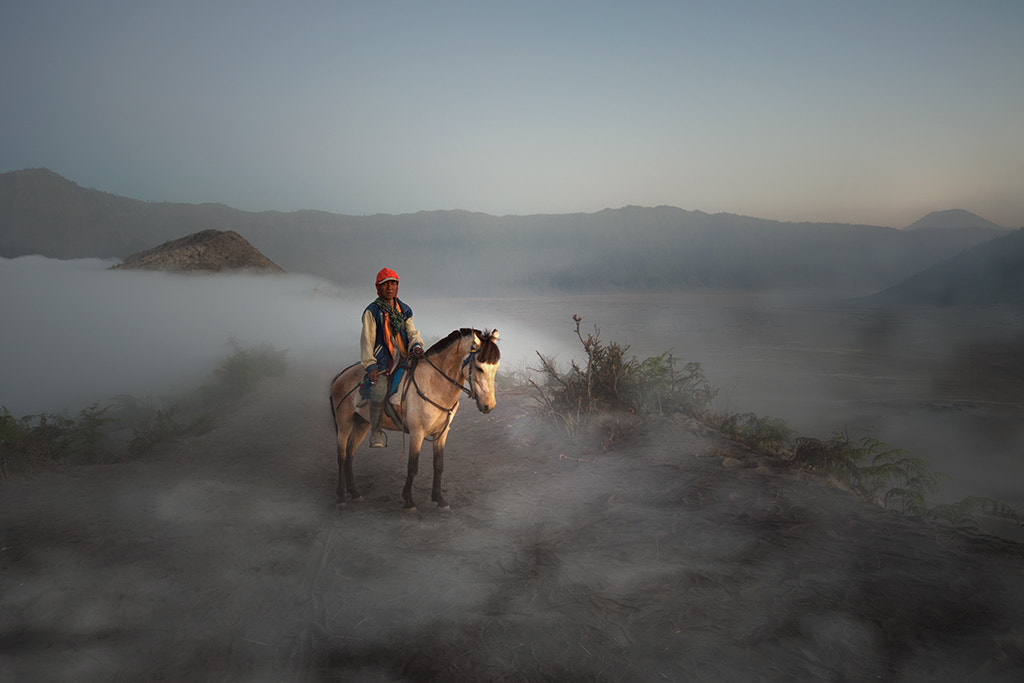 Photograph Horseman by Son Nguyen on 500px