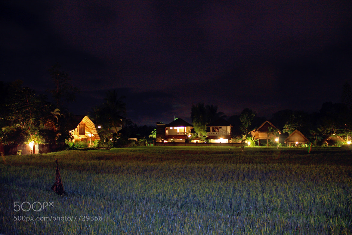 Photograph sawah behind resto by Joe P. Marselo on 500px