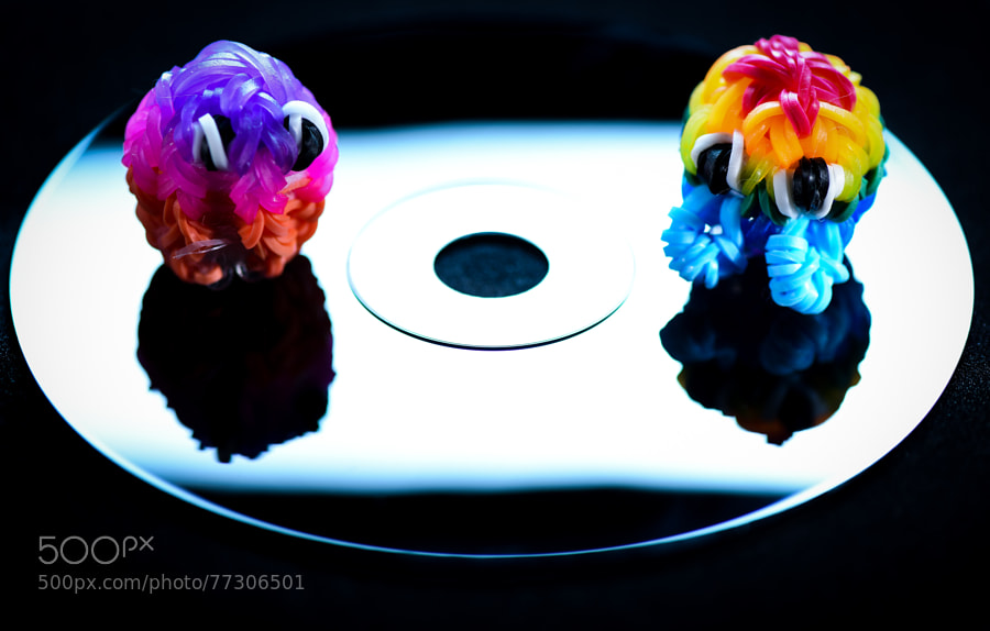 Photograph Rainbow Loom Critters by Jay Scott on 500px