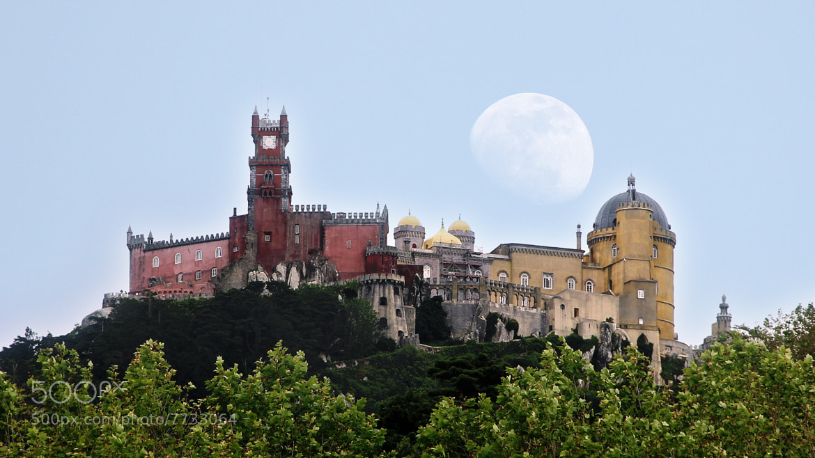 Photograph Pena Palace by Rui Mendonza on 500px