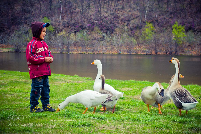 Photograph Мальчик и гуси by Dima Oleynik on 500px