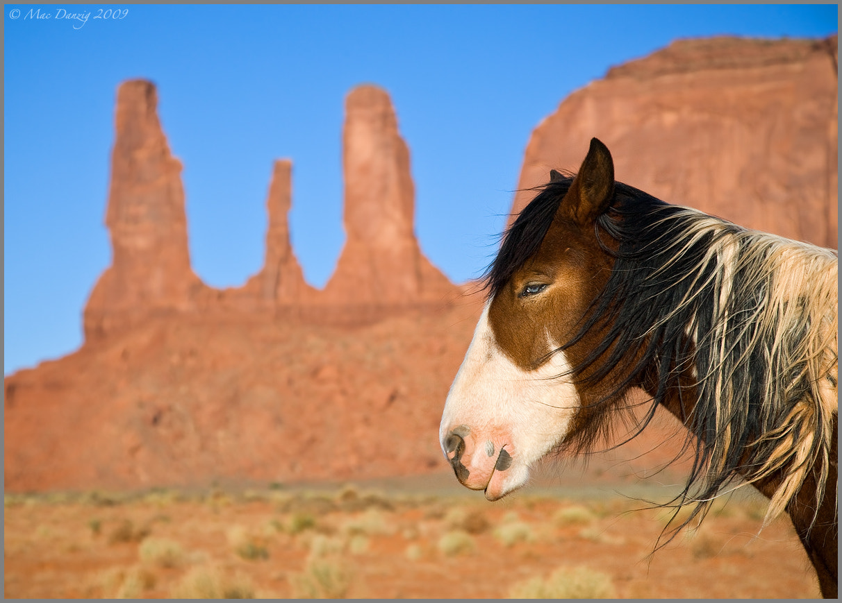 Photograph Three Sisters and the Horse... by Mac Danzig on 500px