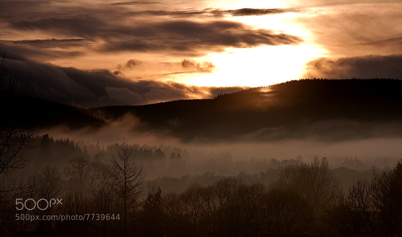 Photograph Deeside Mist by Nick Bell on 500px