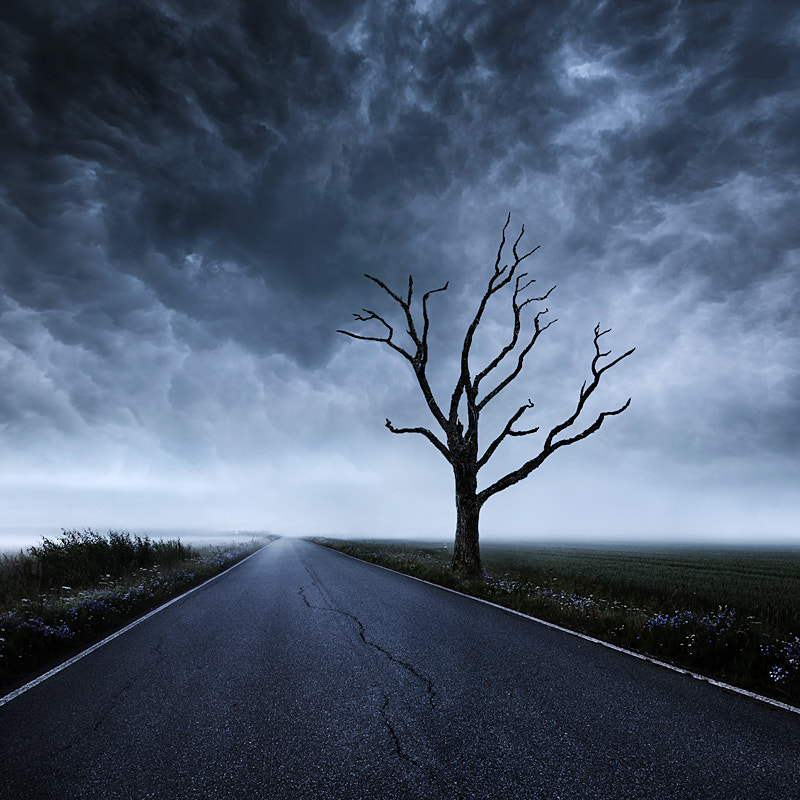 Photograph Detour II by Mikko Lagerstedt on 500px
