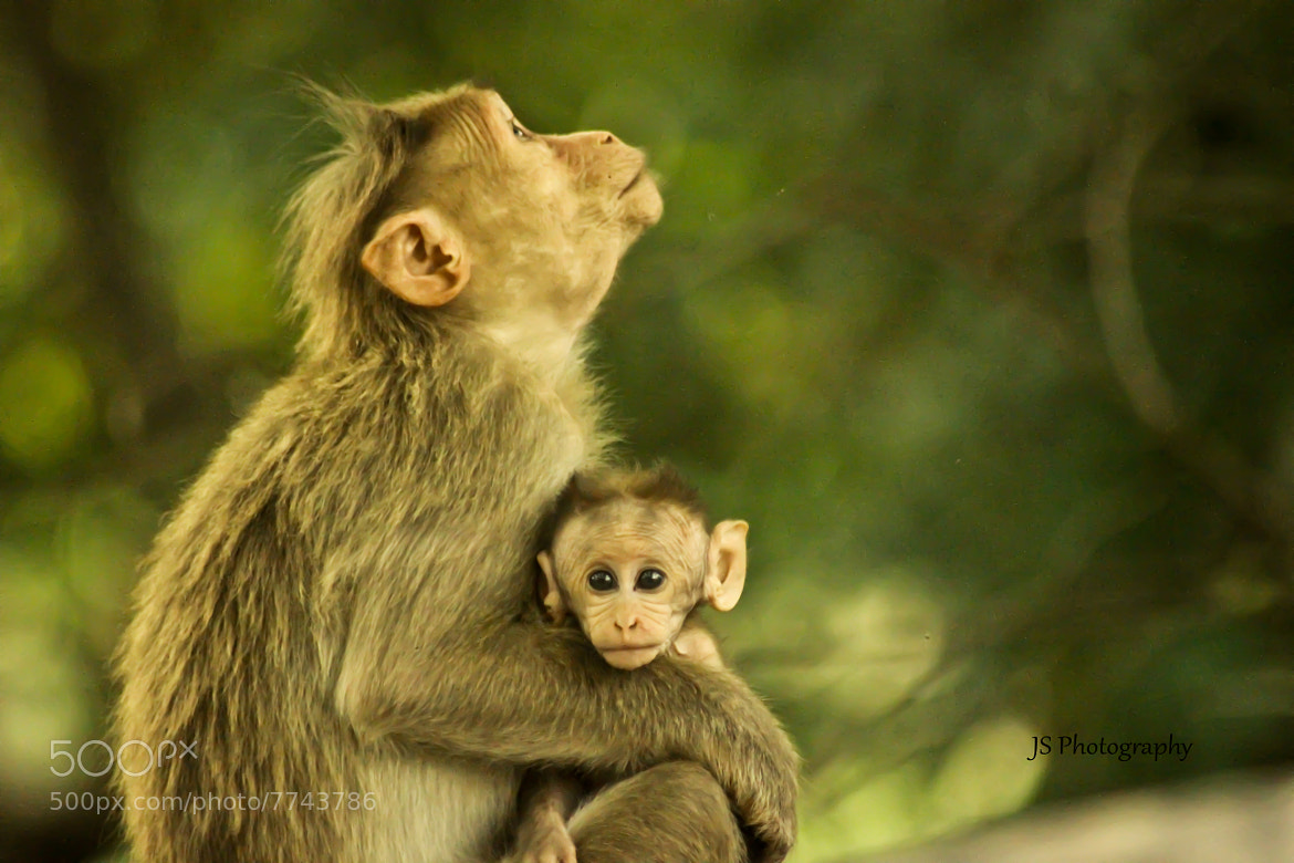Photograph Mom & Kid by JAGADEESHAN SUDARSANAM on 500px