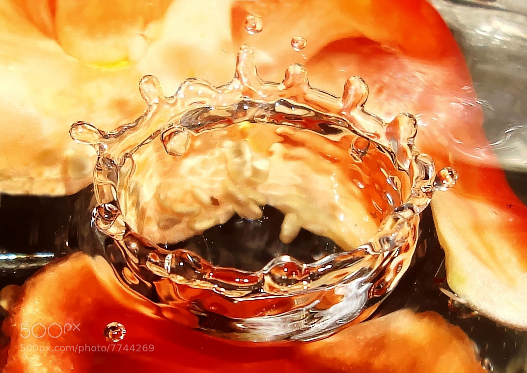 Photograph Red Capsicum Splash by Premkumar Antony on 500px