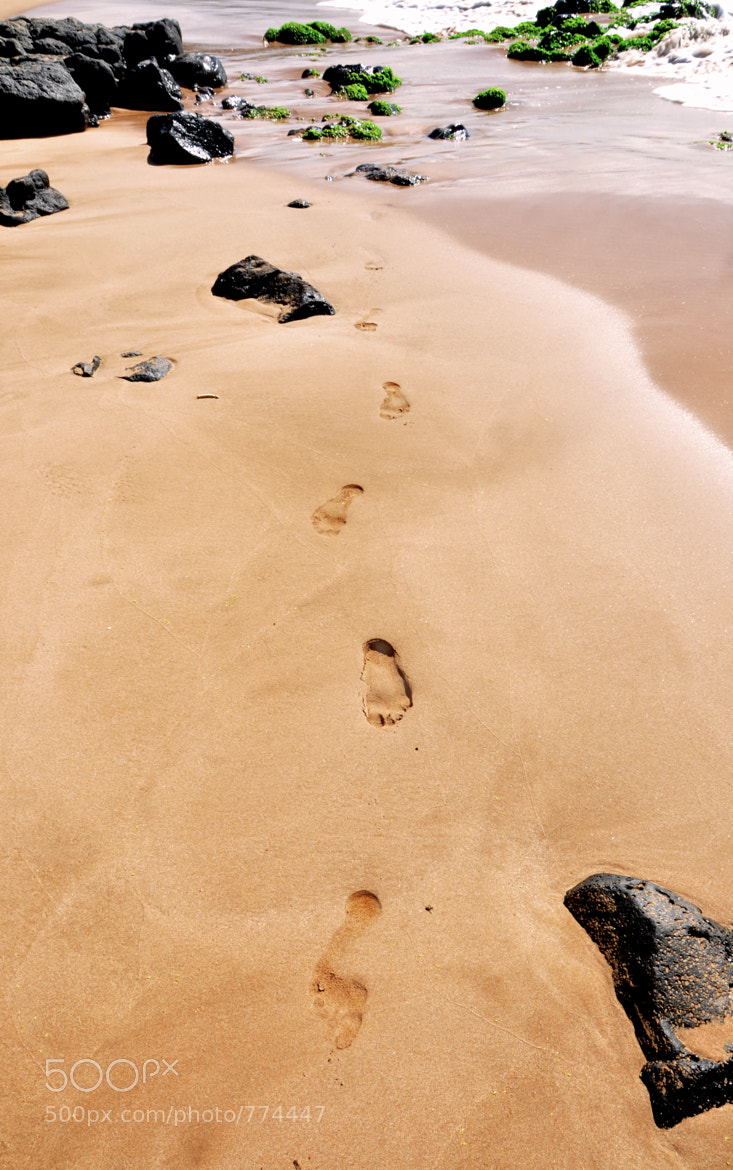 Photograph Footprints by Brett Bollier on 500px