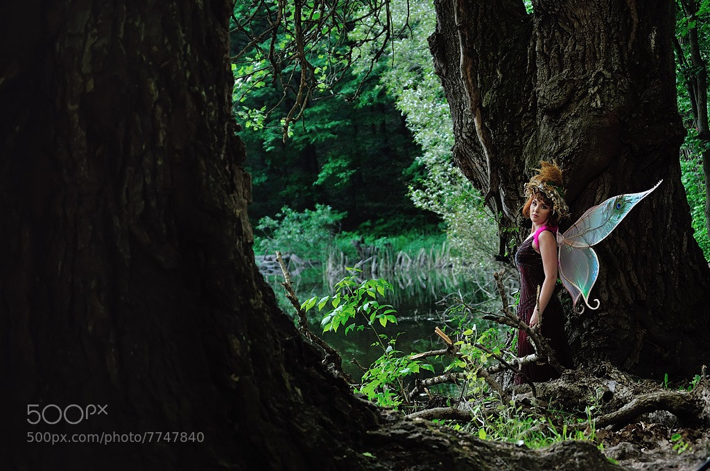 Photograph forest fairy by Kompaniyets Aleksander on 500px