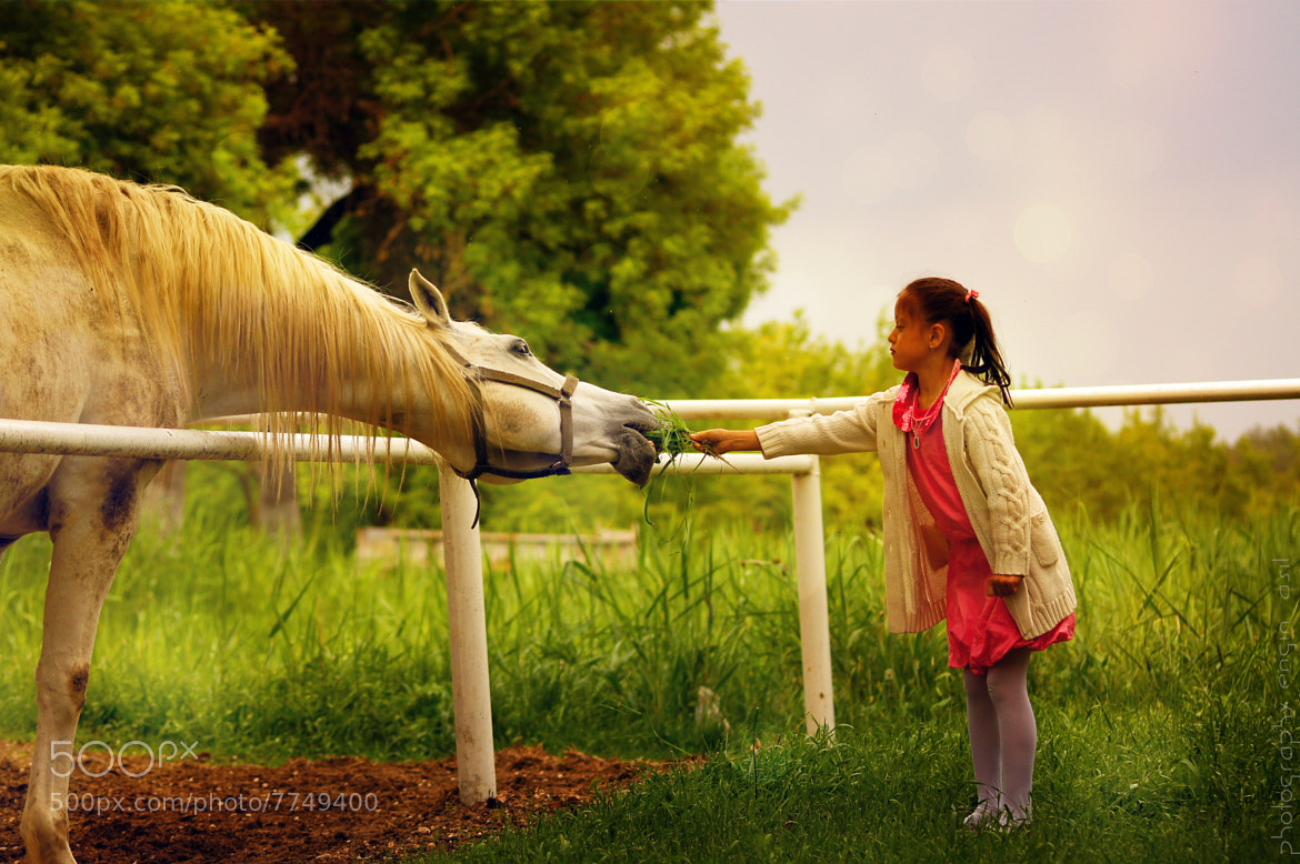 Photograph horse & child by Engin Asil on 500px