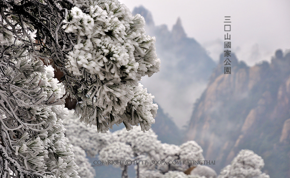 Photograph Mount SanqingShan : CHINA by Jumrus Leartcharoenyong on 500px