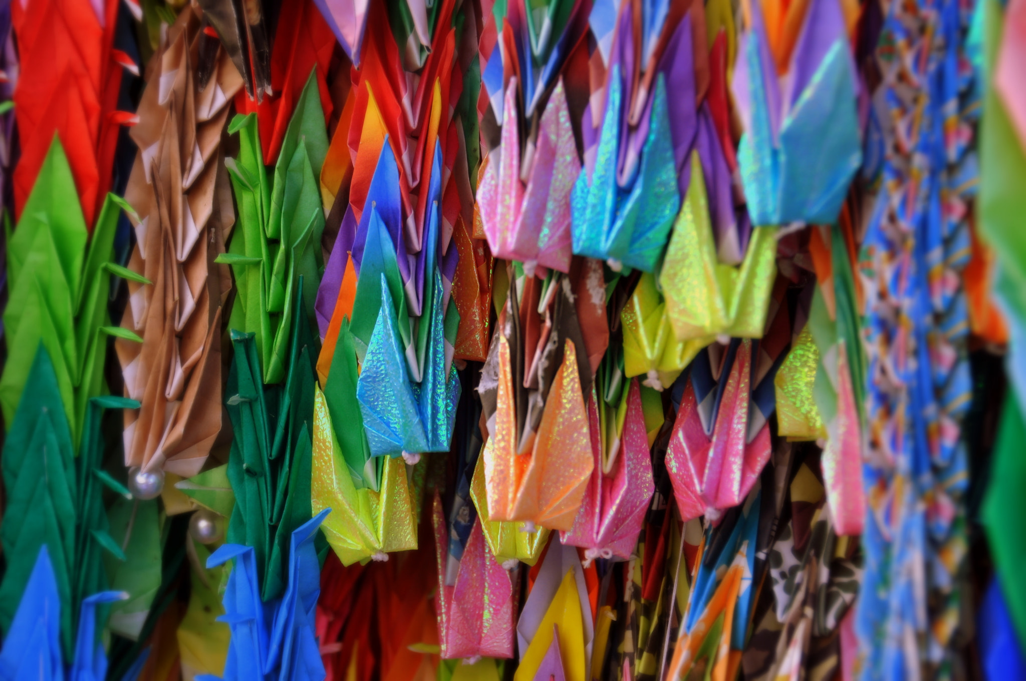 Photograph 1000 Paper Crane Project - Hiroshima by Rebeca Rosalia on 500px