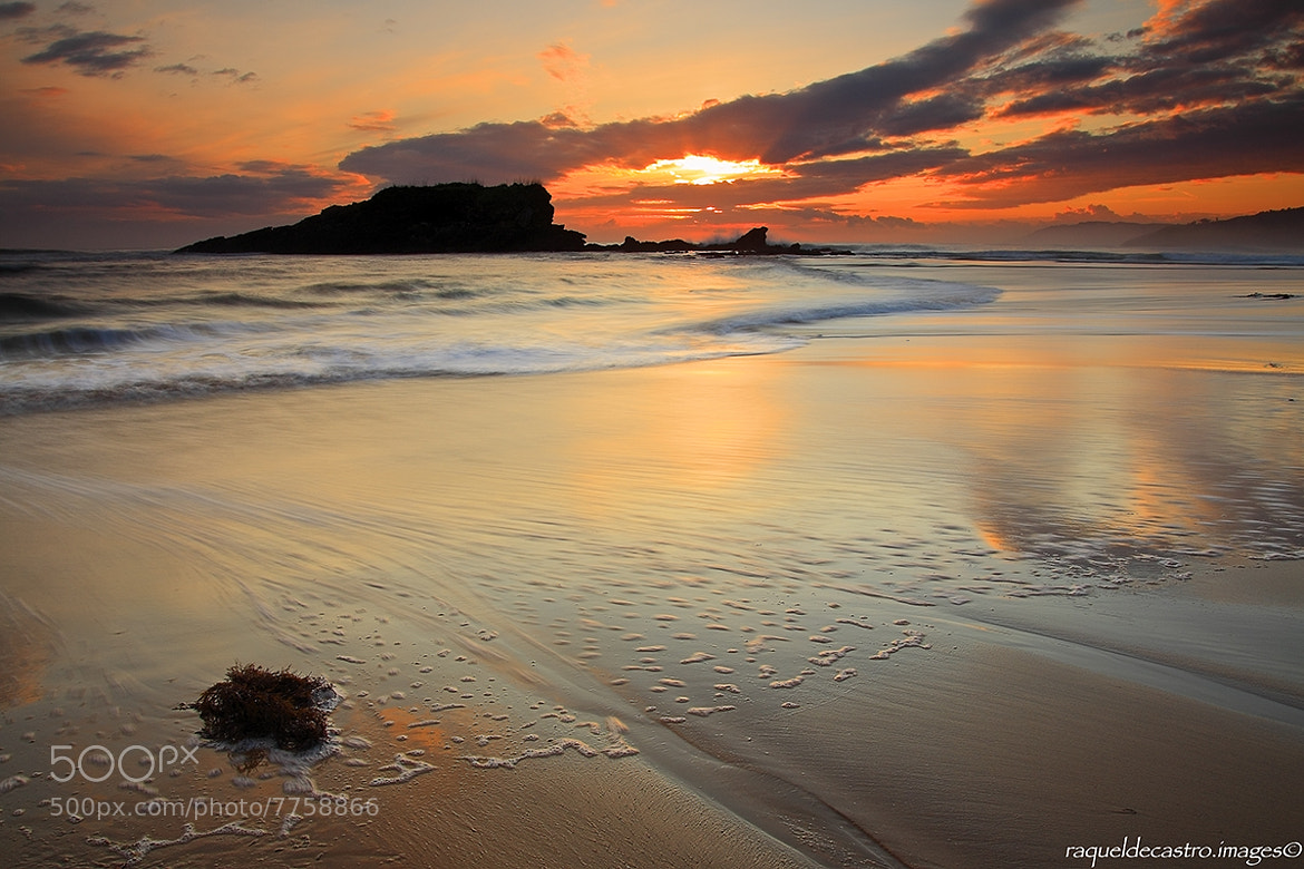 Photograph La isla. by Raquel de Castro on 500px