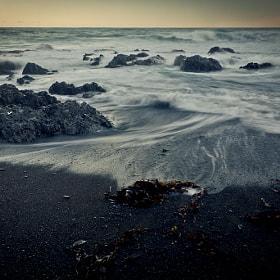 Tide, 2012