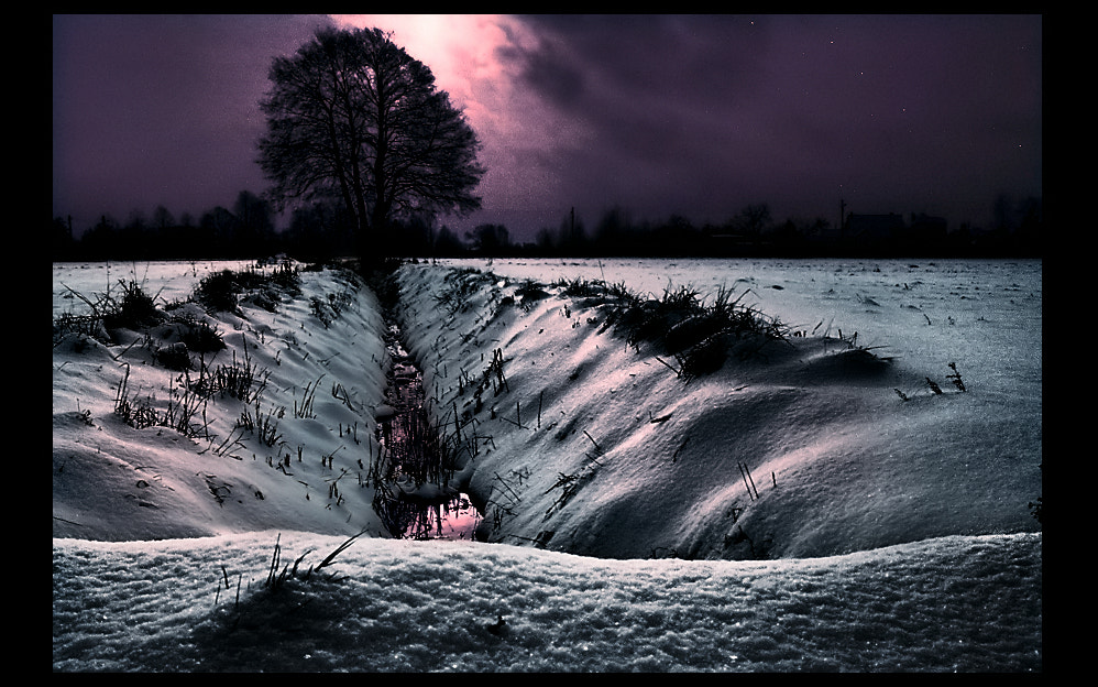 Photograph Winter Lonelyness  by EMERALD WAKE © on 500px