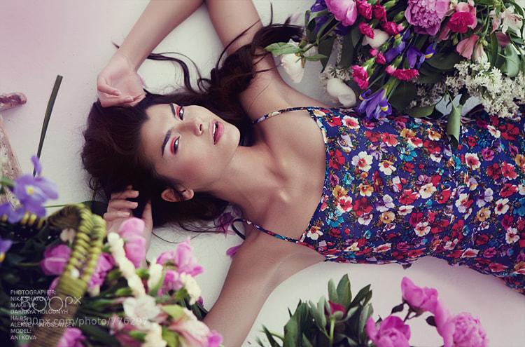 Photograph Fresh Flowers by Nika Shatova on 500px