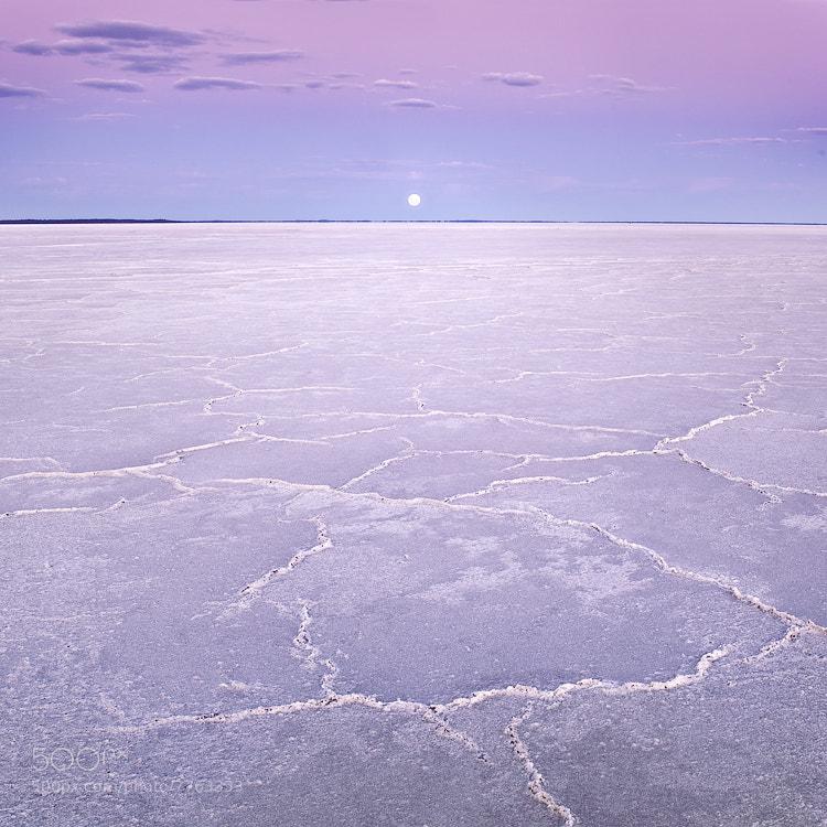 Photograph Seeking Solitude by Luke Austin on 500px