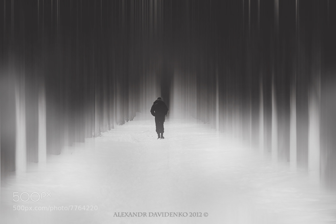 Photograph alone by Alexandr Davidenko on 500px