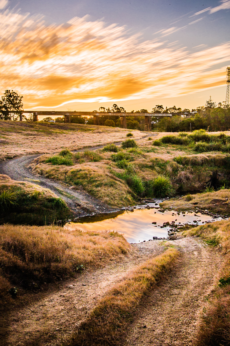 Photograph Gympie Gold by Matthew Post on 500px