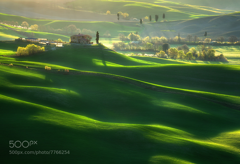 Photograph Green waves... by Krzysztof Browko on 500px