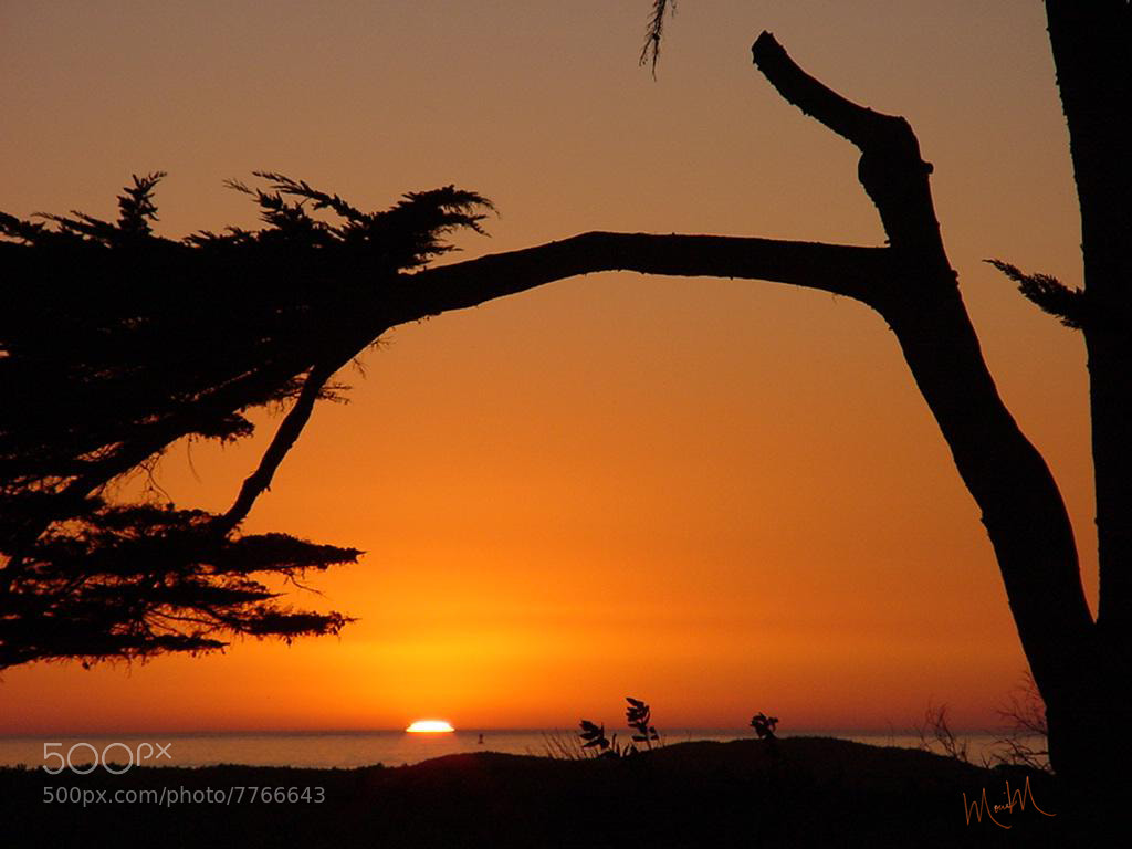 Photograph Cali Sunset by Monica Winkler on 500px