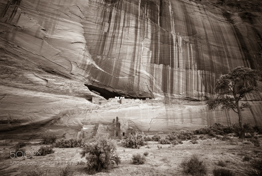 Photograph White House Ruin - Canyon de Chelly by Pat Kofahl on 500px
