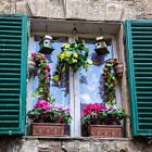 Fensteransicht mitten in Siena
