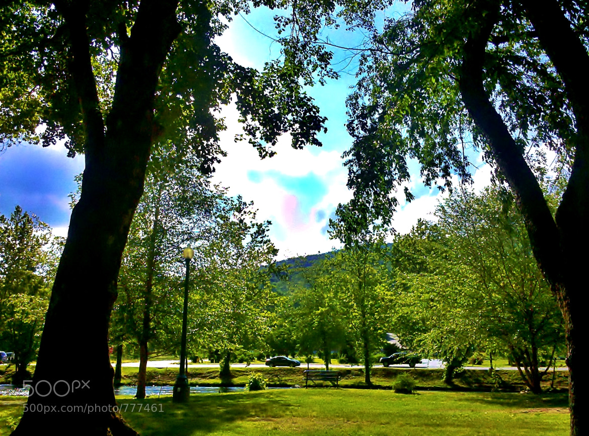 Photograph Day at the park by Alfred Thomas on 500px
