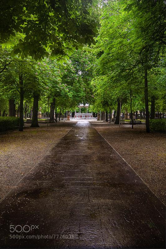 Photograph Vitoria-Gasteiz Capital green by Jorge Castilla on 500px