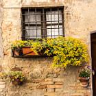 Fenster der Toscana