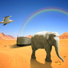 Постер, плакат: Arc of Noah with elephant and bird in desert with rainbow