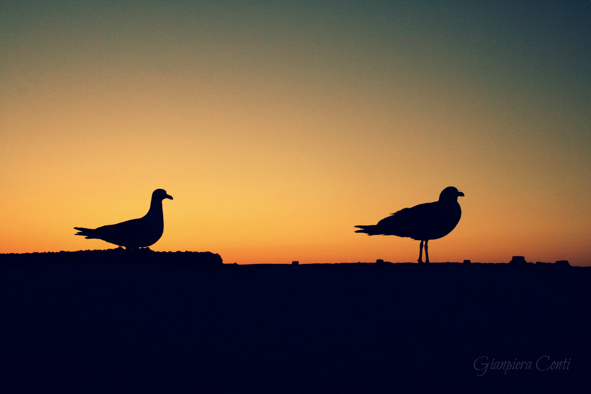 Photograph Silhouettes by Gianpiera  Conti on 500px