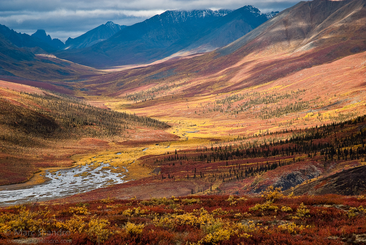 Photograph North Klondike Valley Yukon by Marc Shandro on 500px