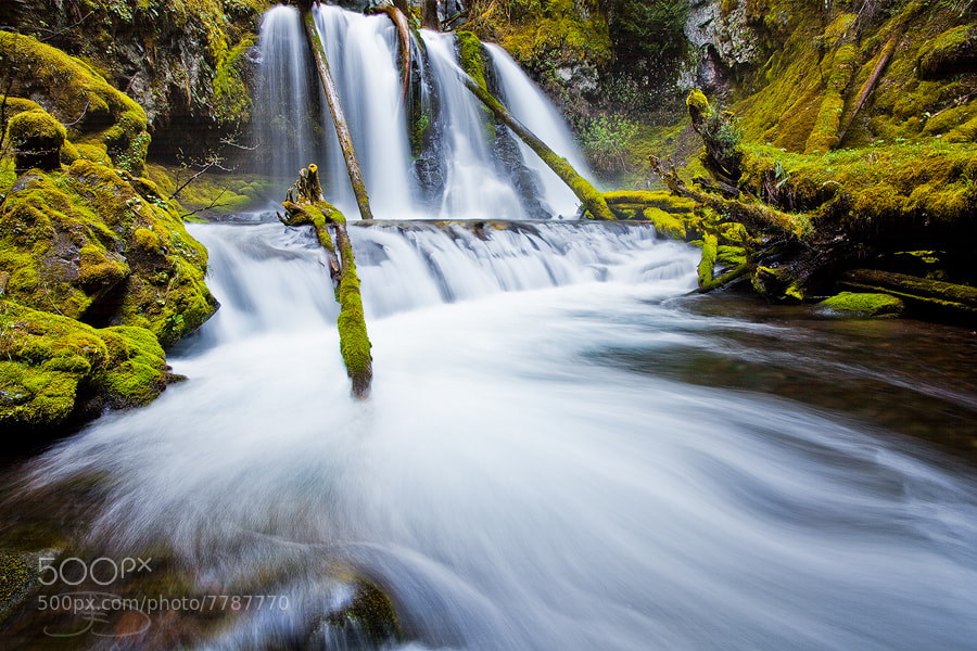 Photograph Lower Panther Creek Falls by Joseph Balcken on 500px