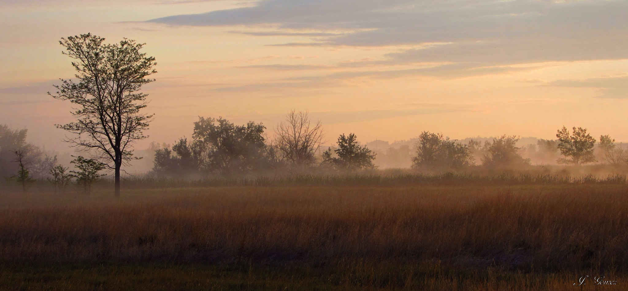 Photograph Morning Mist by Johnny Gomez on 500px