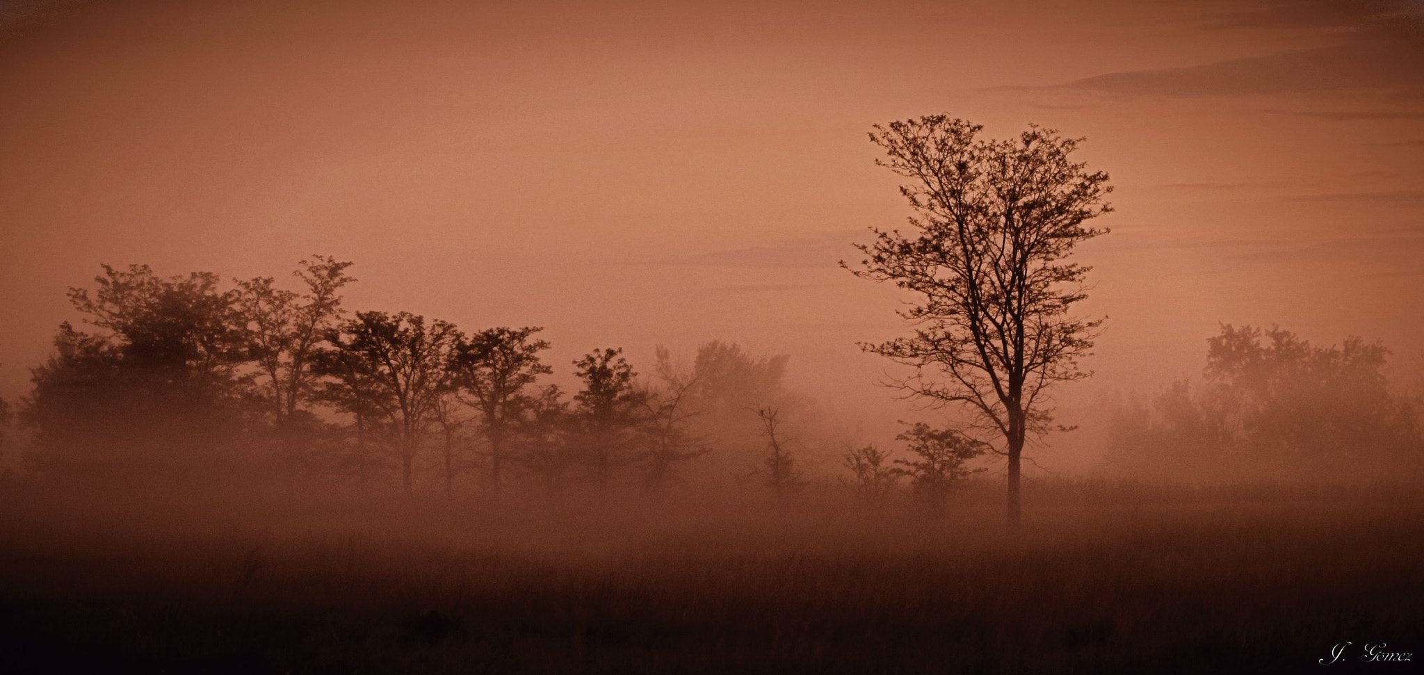 Photograph Morning Mist2 by Johnny Gomez on 500px