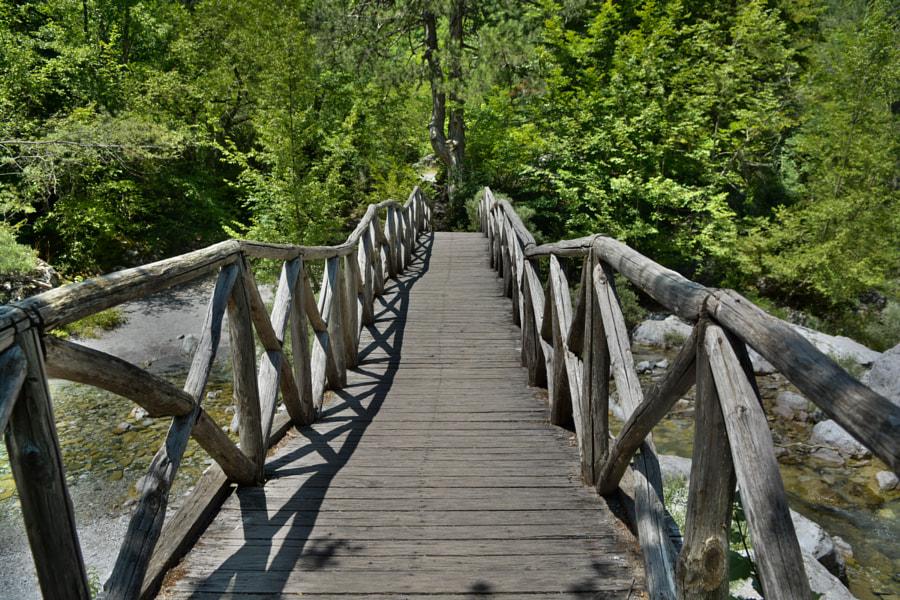 Bridge to ?