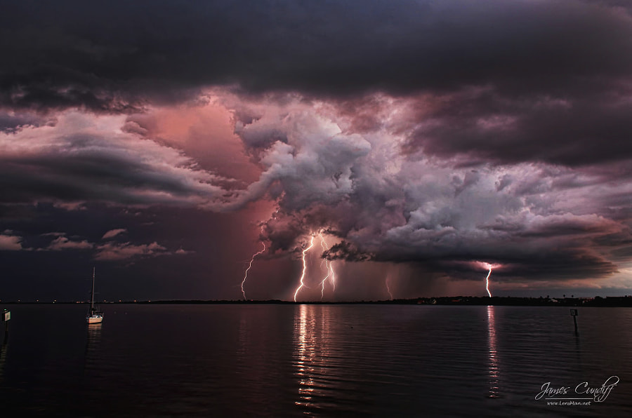 Lightning Storm over Tampa, Florida by James Cundiff on 500px.com