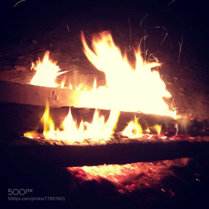 Photograph Camp fire by Ali Fardan